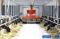 В Витебском районе возвели научно-практический центр по выращиванию племенного скота и производству молока, аналогов которому нет в Беларуси и России