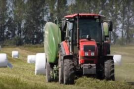 Современные технологии заготовки кормов на полях Оршанского района(07.08.2019)