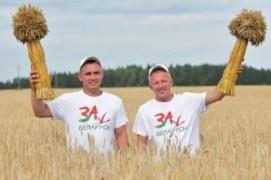 В Витебской области на уборке зерновых определился экипаж-тысячник (04.08.2020)