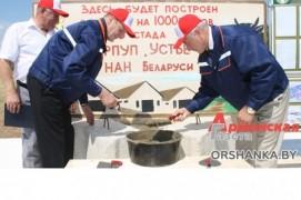 Ферма с «Каруселью» появится в Оршанском районе (05.07.2018)